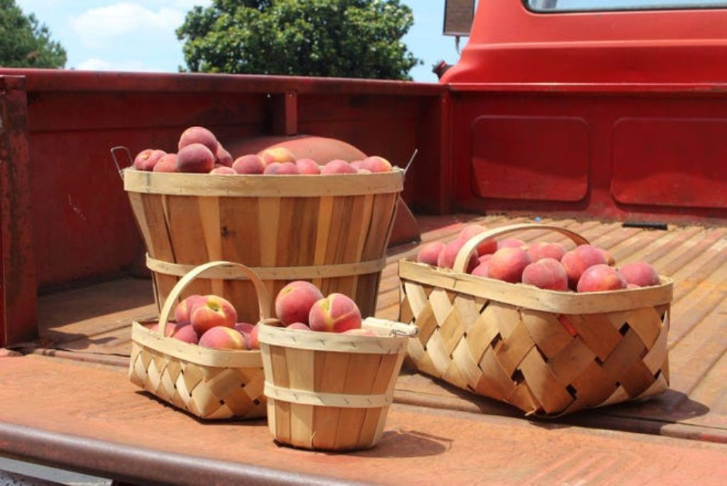 Georgia Peach Truck will be in R.I. on Wednesday